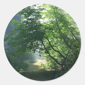 Smokey Paths Trails Forests Woods Classic Round Sticker