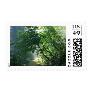 Smokey Paths Trails Forests Woods Postage Stamp