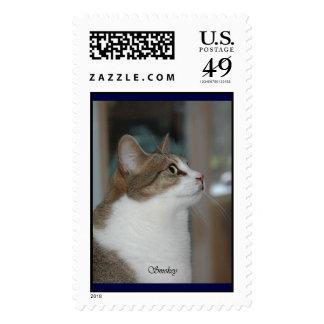 Smokey Postage Stamps
