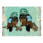 Smokey Rose Owls   Postcard