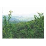 smokies distantes #70 de la visión tarjetas postales