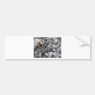 Smoking burning charcoal bumper sticker