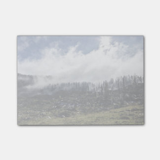 Smoking ground after a forest fire post-it® notes