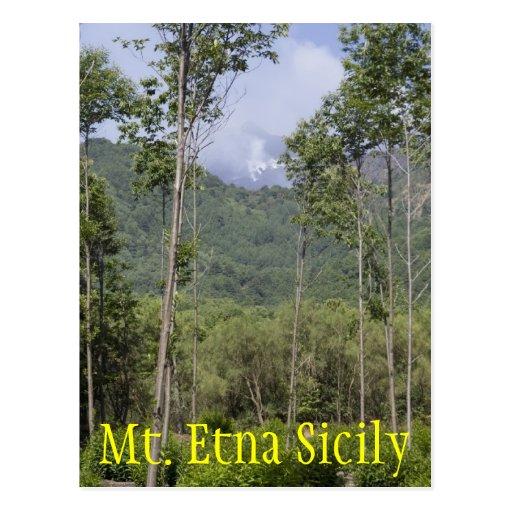 Smoking Mt Etna Through the Trees Postcard