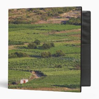 Smokvica vineyards on Korcula from the Toreta Vinyl Binders