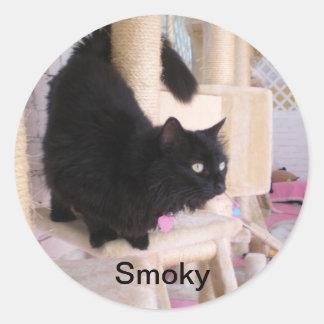 Smoky - Black Cats RULE! Sticker
