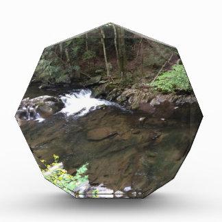 Smoky Mountain Creek Acrylic Award