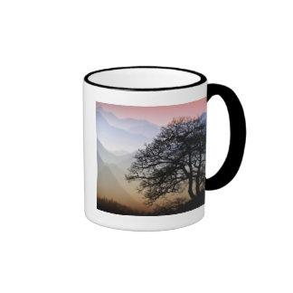 Smoky Mountain Sunset from the Blue Ridge Parkway Coffee Mug
