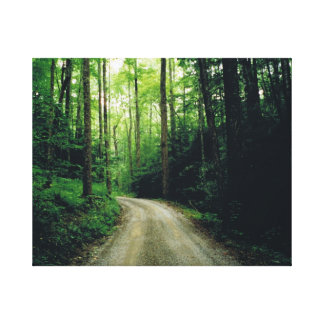 Smoky Mountain Trail Stretched Canvas Print