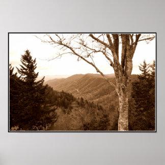 Smoky Mountains Clingmans Dome Poster