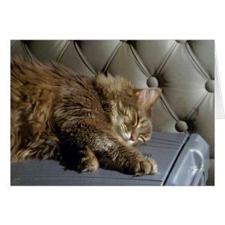 Smoochie Girl Kitty (#1) Card