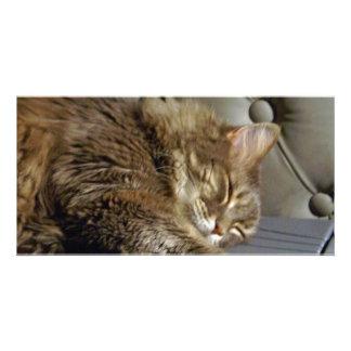 Smoochie Girl Kitty (#1) Customized Photo Card