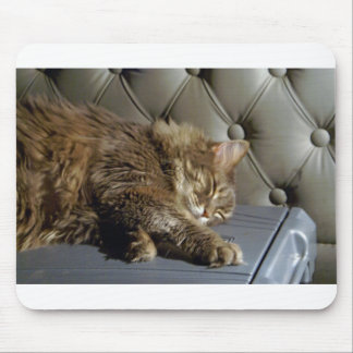 Smoochie Girl Kitty (#1) Mouse Pad