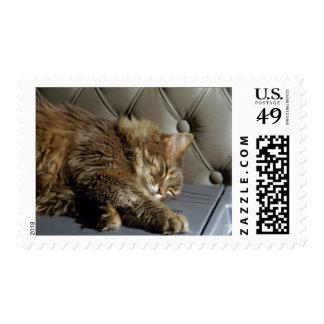 Smoochie Girl Kitty (#1) Postage