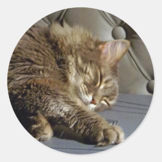 Smoochie Girl Kitty (#1) Round Stickers