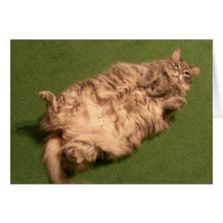 Smoochie Girl's Daily Kitty Yoga Card