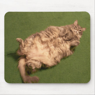 Smoochie Girl's Daily Kitty Yoga Mouse Pad