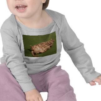 Smoochie Girl's Daily Kitty Yoga Tee Shirts