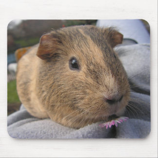 Smooth, Agouti Guinea Pig and Pink Flower Mouse Pad