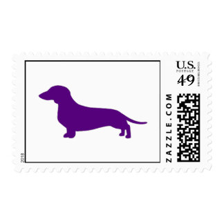 Smooth coat Purple Dachshund stamps