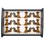 Smooth Coated Dachshund Dogs Serving Tray