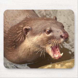 Smooth Coated Otter Mouse Pad