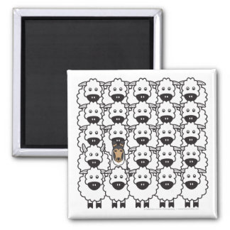 Smooth Collie in the Sheep Refrigerator Magnet