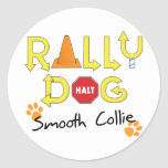 Smooth Collie Rally Dog Round Stickers