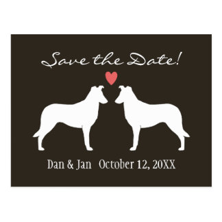 Smooth Collies Wedding Save the Date Postcard