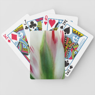 Smooth Colours Bicycle Playing Cards