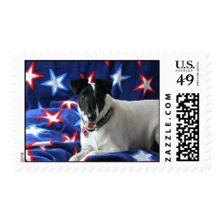Smooth Fox Terrier Postage Stamp