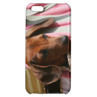 Smooth-haired Miniature Dachshund Puppy Cover For iPhone 5C