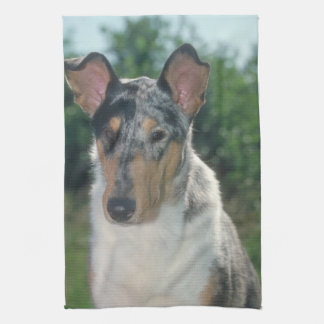 Smooth Merle Collie Dog Kitchen Towel