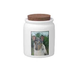 Smooth Merle Collie Dog Treat Candy Jar