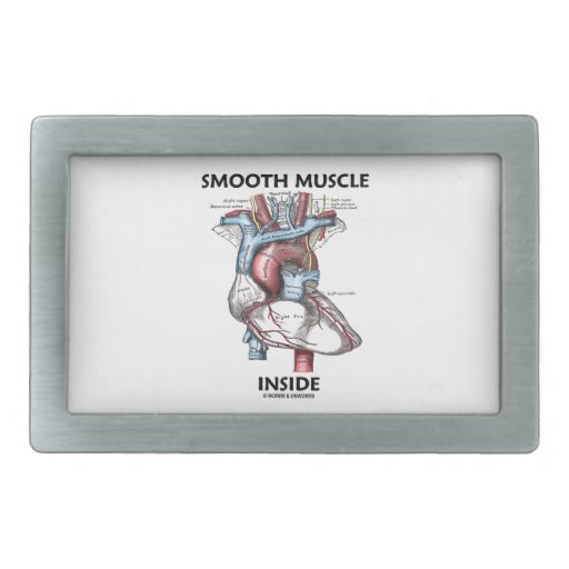 Smooth Muscle Inside (Gray's Anatomy Heart) Rectangular Belt Buckles