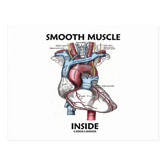 Smooth Muscle Inside (Gray's Anatomy Heart) Postcard