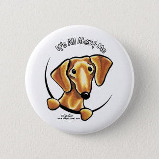 Smooth Red Dachshund Its All About Me Pinback Button