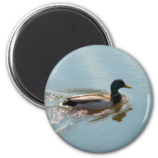 Smooth Sailing 2 Inch Round Magnet
