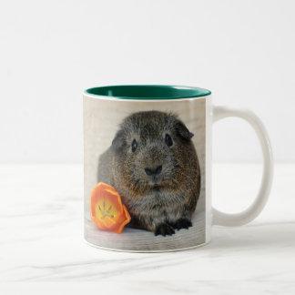 Smooth, Shorthair, Agouti Guinea Pig and Poppy Two-Tone Coffee Mug
