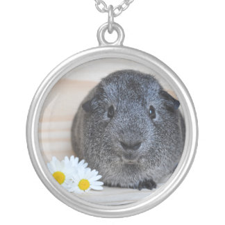 Smooth, Silver Agouti Guinea Pig and Daisies Silver Plated Necklace