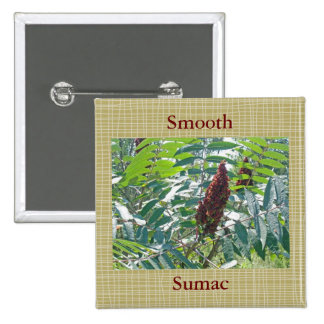 Smooth Sumac Berries Matching Items Buttons