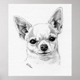 Smoothcoat Chihuahua Champion Poster