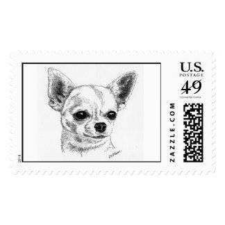 Smoothcoat chihuahua postage