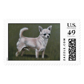 Smoothcoat chihuahua - standing (male) postage stamp