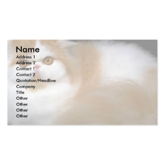 Smudge Business Card