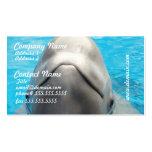 Smug Beluga Whale Business Cards