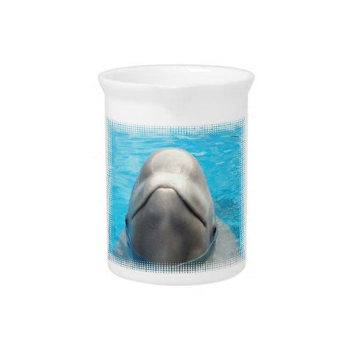 Smug Beluga Whale Pitcher