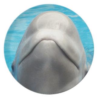 Smug Beluga Whale Plate