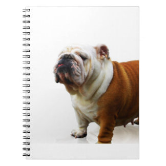 Smug Bulldog Notebook