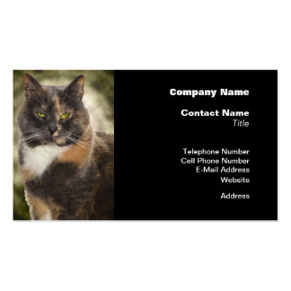 Smug Kitty - Do What You Want Business Card